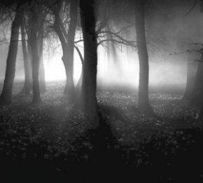 Depressive Black Metal - Обзор стиля