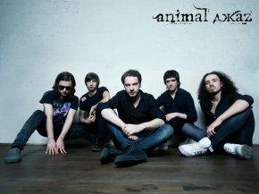 Animal ДжаZ - обои группы для рабочего стола