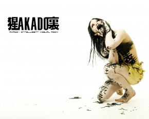 Akado - Обои для рабочего стола