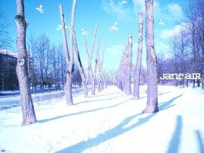 Jane Air - Обои \ Фоны \ Изображения