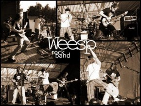 WEESP - История  Обзор  Фотографии группы