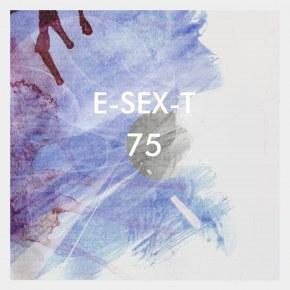 E-SEX-T - История группы \ Биография \ Обзор \ Фотографии