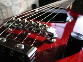 Фирмы производители гитар – общий список