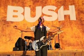 Фронтмэн Bush о своей сольной карьере