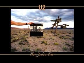 U2 - Фоны, обои, картинки, изображения