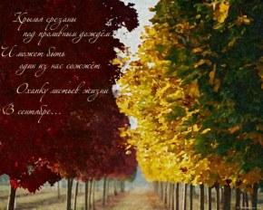 Осень Моей Жизни - Фоны, обои, картинки группы