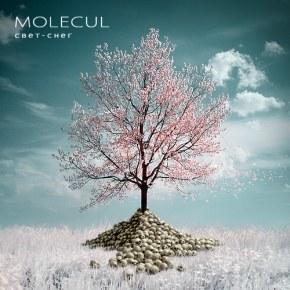 Molecul - История группы, биография, фотографии