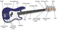 Как играть на бас гитаре? Обзорная статья - инструкция