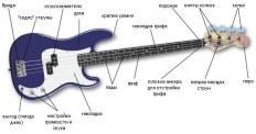 Настройка бас гитары. Подробное руководство для новичков и профессиональных музыкантов