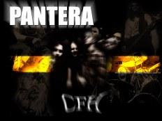 Pantera - История группы \ Биография + Фото