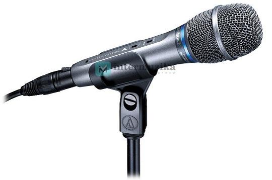 Как правильно выбрать микрофон для женского вокала