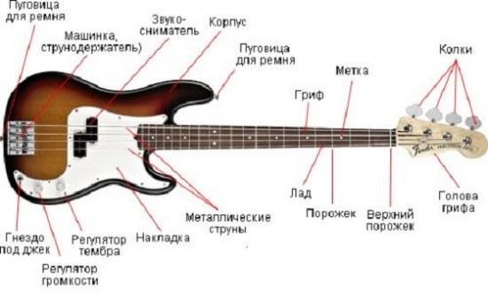 Выбор бас гитары: тонкости и советы